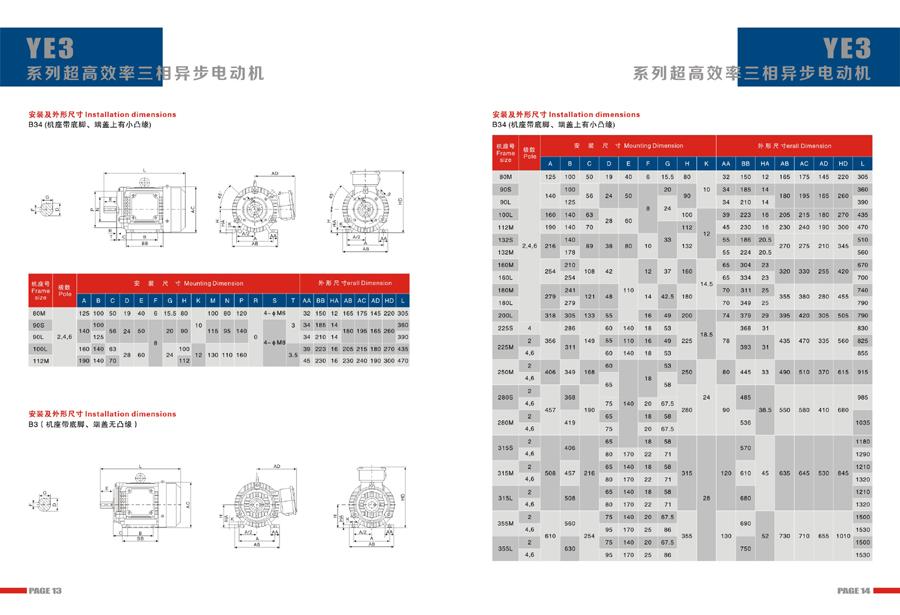 Leadrive Motor Catalog9