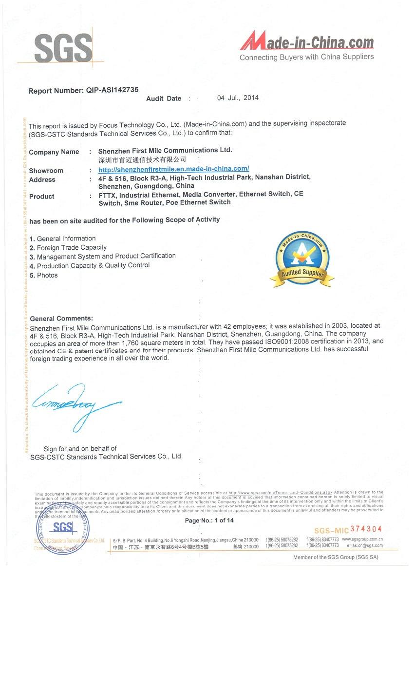 SGS Standard Audit