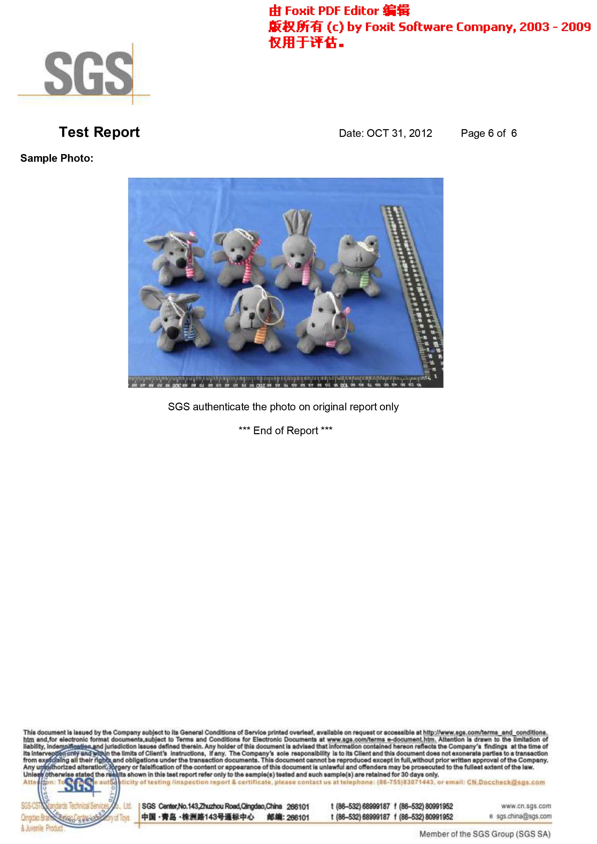 SGS report for reflective toy hanger