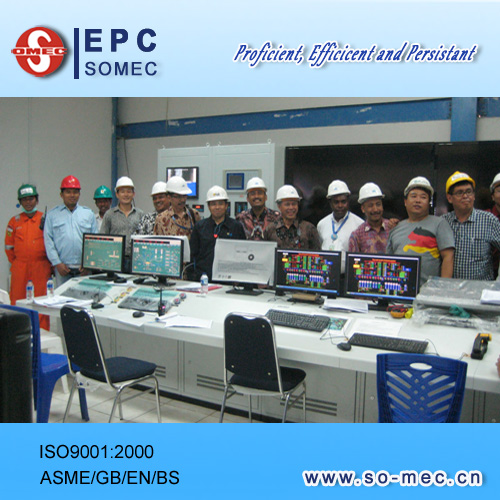 Congratulations on Successful Scychronization of Coal Fired Power Plant