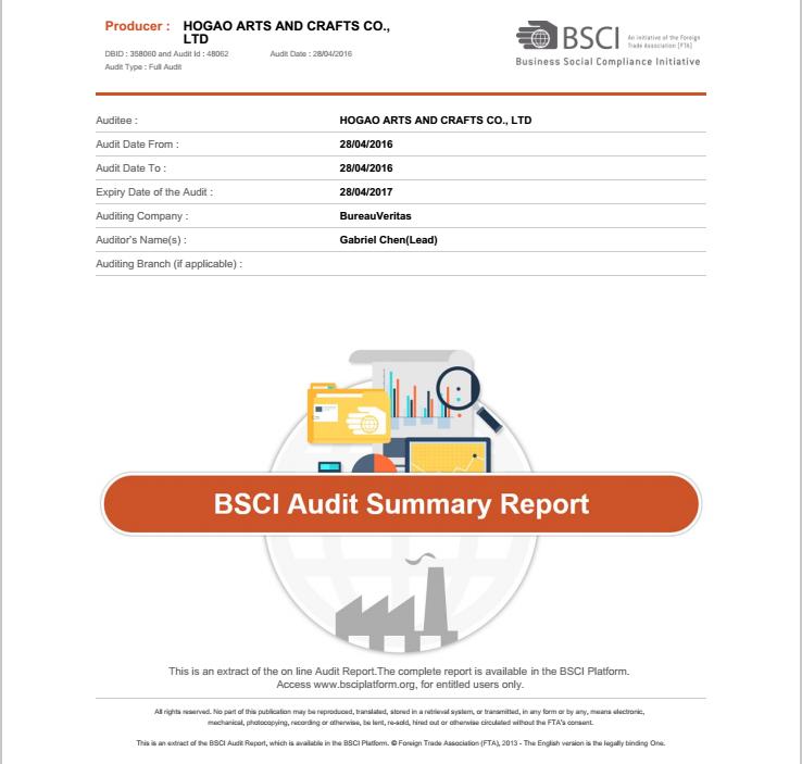 BSCI REPORT