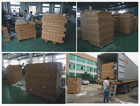 ChuangGao Exhibition ( Loading into 40'Container)