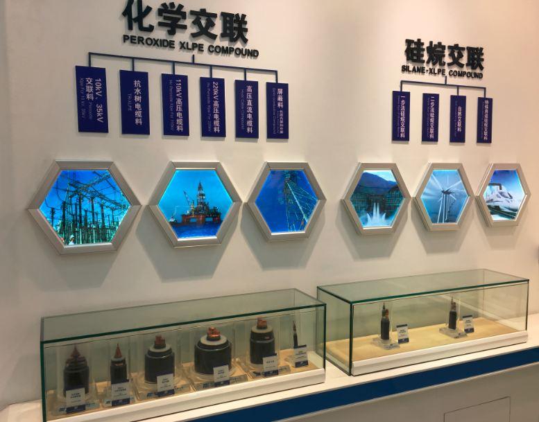Company Exhibition 2