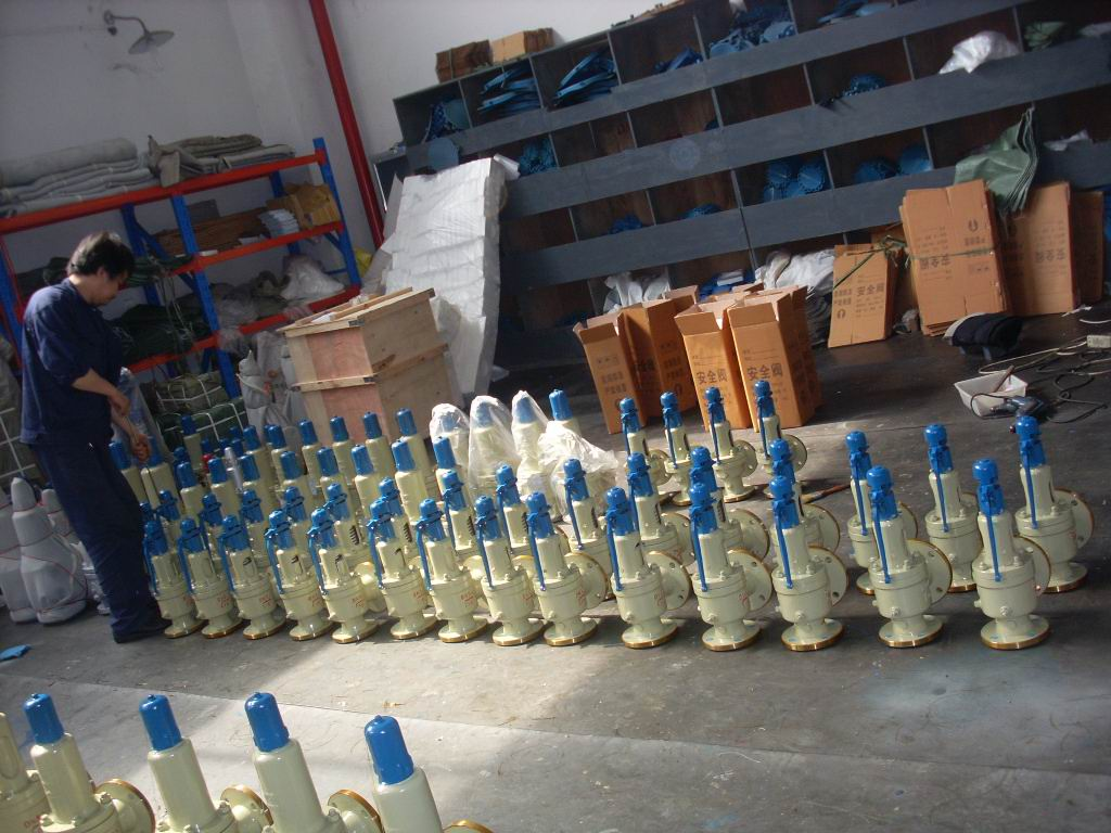 Goole Safety Valve Packing