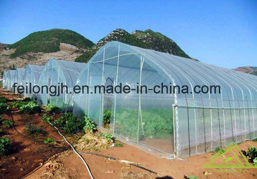 single tunnels greenhouse