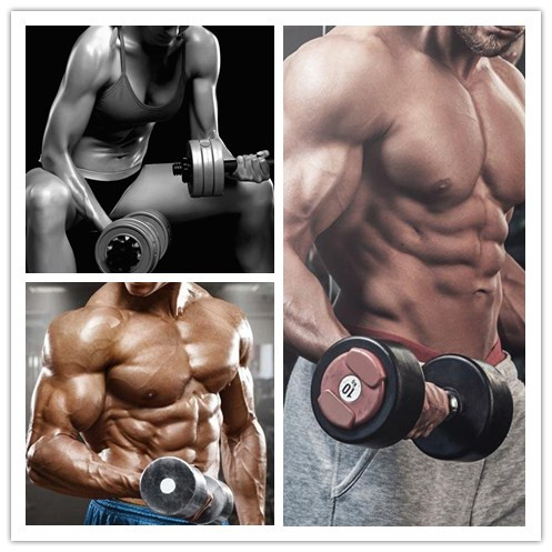 for Bodybuilding&Muscle Building