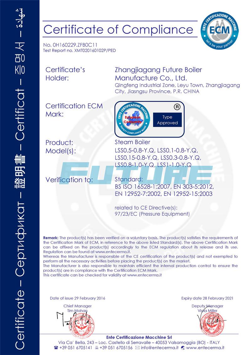 CE Certificate for Oil(Gas) Steam Boiler