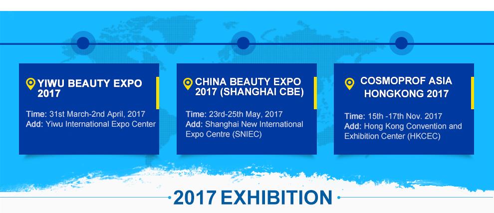 2017 - Exhibition