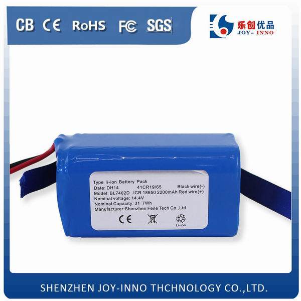 Lithum Ion Battery