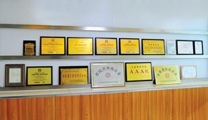 Jiangsu Dongfang Corporation Honours