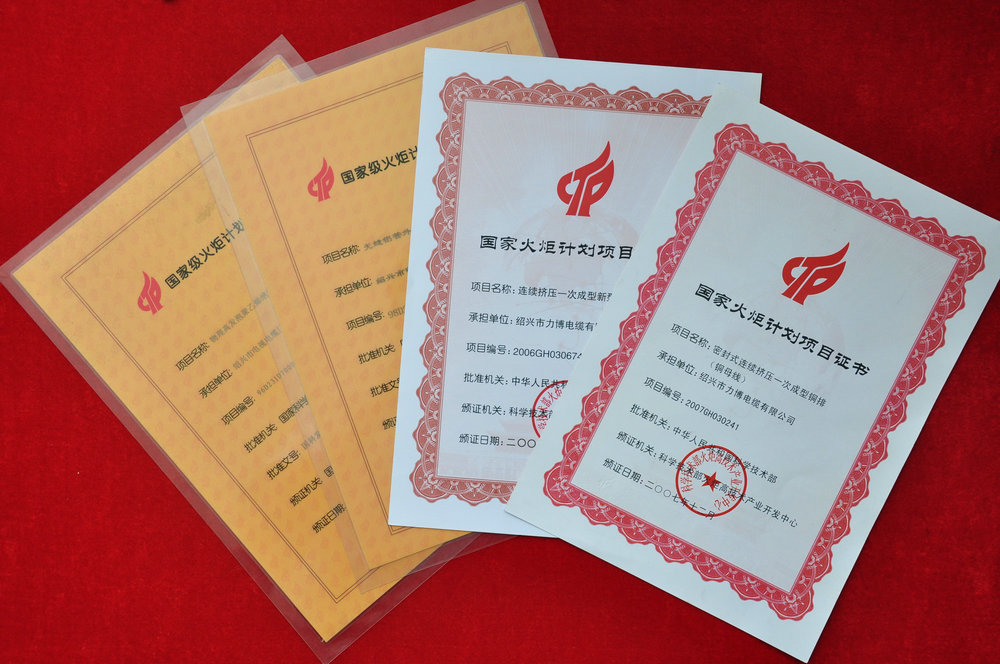 Certificate of national torch plan project
