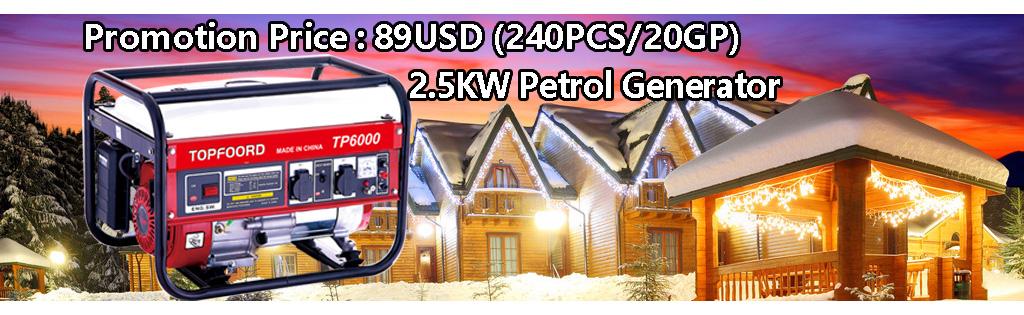 2016 New Year Promotion -2.5KW Petrol Generator