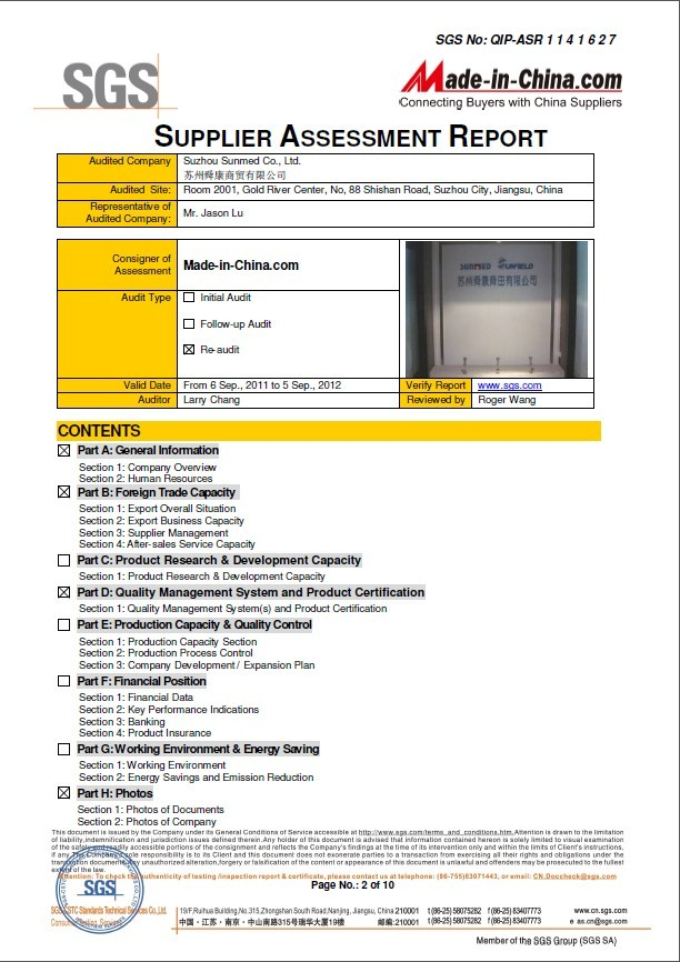 SGS Audit Report-2