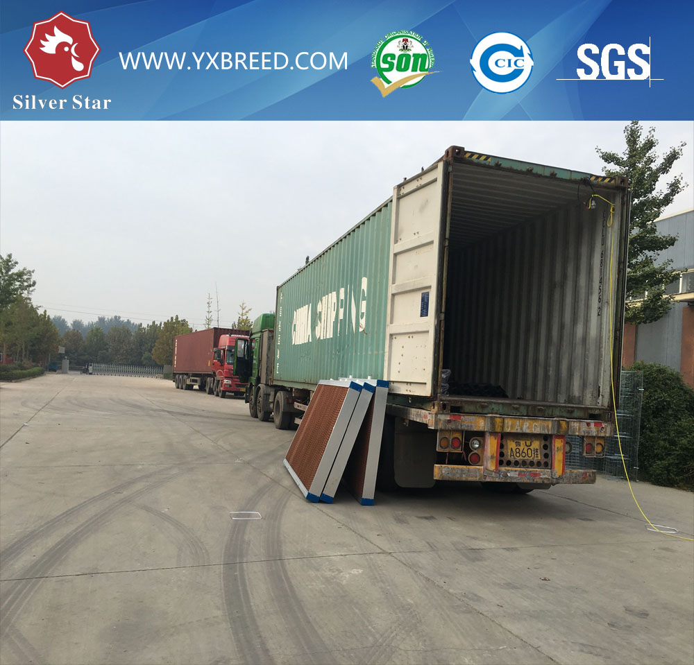 Loading container 2