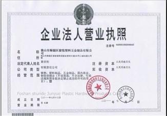 Bisiness Licence