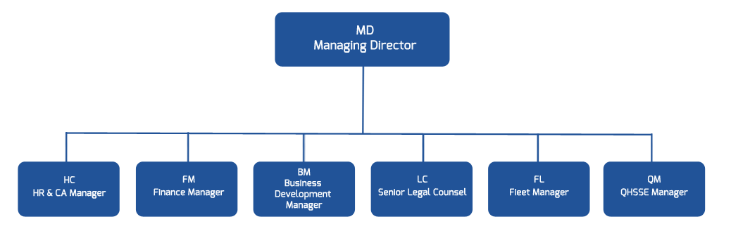 Management system chart