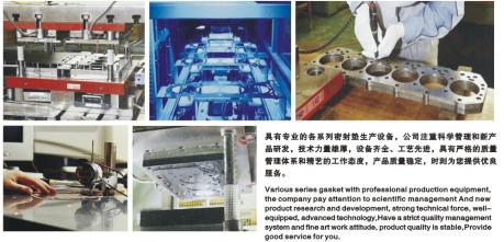Gasket development procss