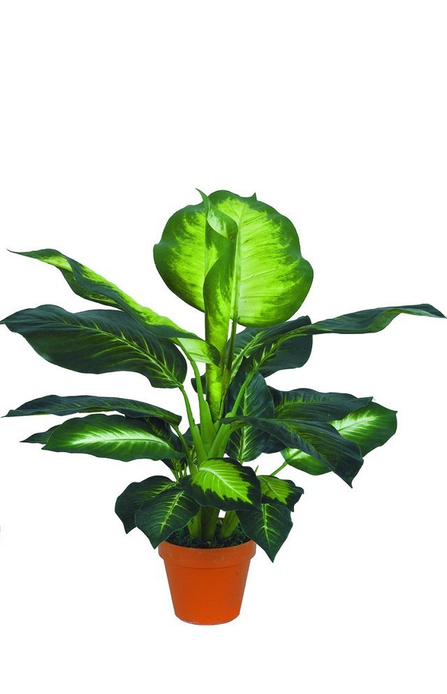 best selling artificial plants of Dieffenbachia