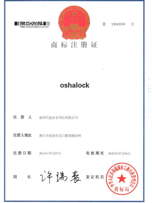 OSHA LOCK LOGO