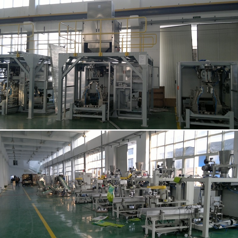 1-25Kg powder/granula bag forming and packaging machine