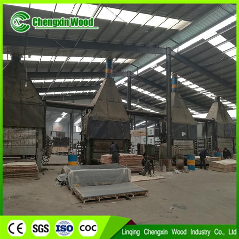 Linqing chengxin economics and trade co ltd fournisseur de contreplaqu marine de la chine - Contreplaque marine 18mm ...