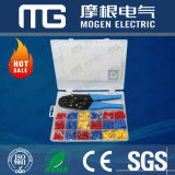 MOGEN Global Market