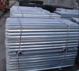 Hot-dip Galvanized Australia Standard Star Picket/Steel Y Fence Post for Farm