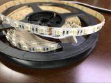 DC24V 5050 RGBW 4 IN 1 LED Strip light