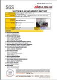 SGS Audit Factory Report 2