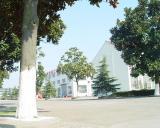 company building 6