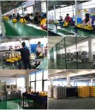 Steam Cleaner Workshop