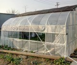 sample greenhouse