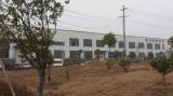 Permanent magnet production line