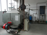 1.0TPH Steam Boiler in Romania