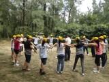 Company Activities-1