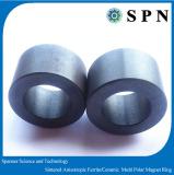 Ceramic Ferrite Multipole Magnet Ring For Motor