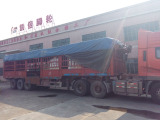 Shipping cargoes4