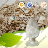 Natural Astragalus Root Extract Cycloastragenol
