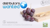 Looking for distributor for Wanhua Ecoboard