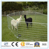 Cattleyards and Accessories Livestock Fence Panels