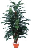 Best selling connected Palm tree