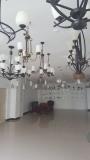 300+ square meters showroom