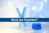 What Are Peptides ?