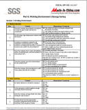 SGS Report - 6