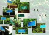 Badaguan of Qingdao