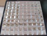 Silver Diamond Mirror Mosaic Tile (HD043A)