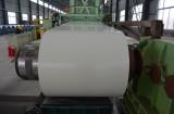 Prepainted Steel Coil Producing