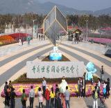 International Horticulltural Exposition 2014 Qingdao