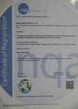 ISO9001/TS16949
