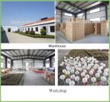 workshop &warehouse